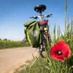 Trasy rowerowe świętokrzyskie – jak przygotować się na wycieczkę?