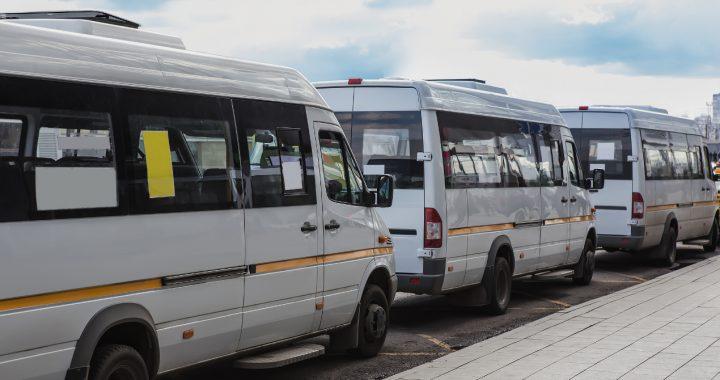 Kto może prowadzić busa? Wymogi formalne i nie tylko